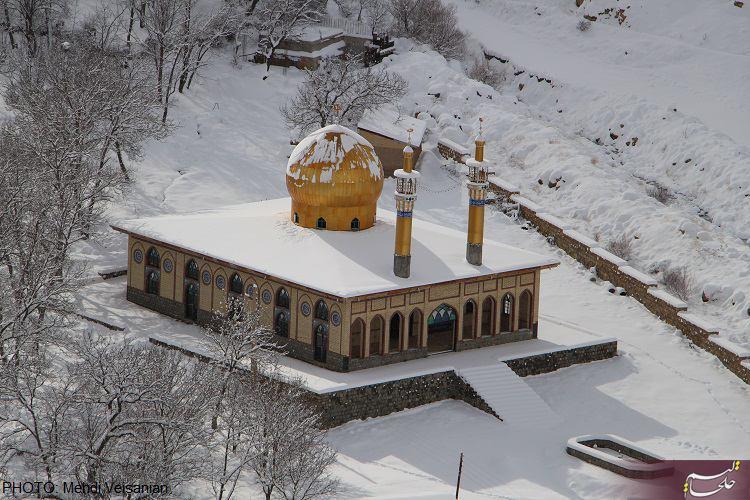 http://up.khalkhalim.com/uploads/148180623474698.jpg